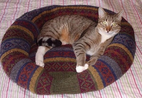 Выкройка лежанки для кошки своими руками