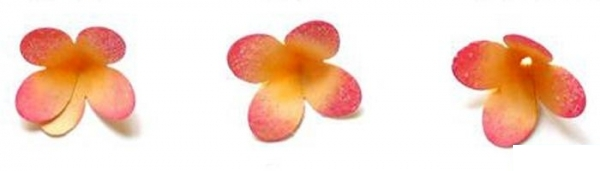 Бумажные цветы для скрапбукинга-2