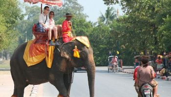 Как съездить в Индию самостоятельно и дешево