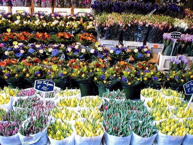 Плюсы и минусы цветочного магазина